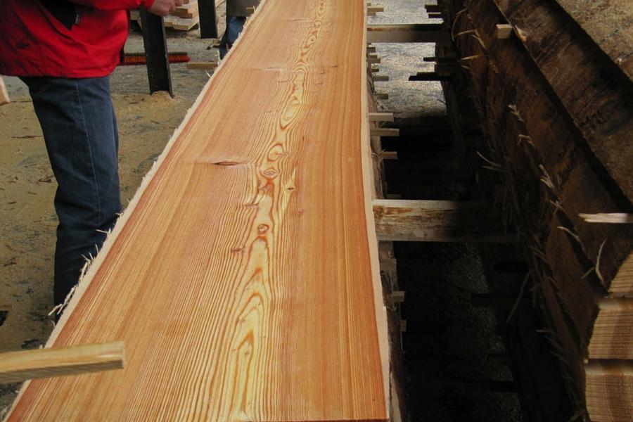 European Larch sawn timber