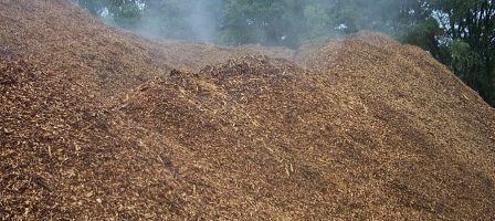 Wood fuel and Waster Material