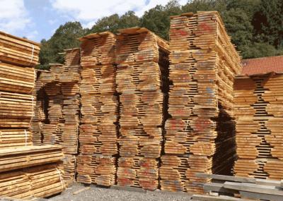 Douglas fir Boules
